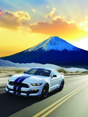 Passenger Car Motor Oil